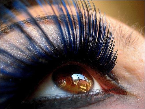 macro-eye-by-ashley-rose