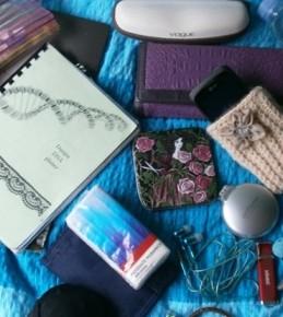 Što Šminkerice nose u torbi? – 2.dio