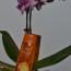 Najbolji Oriflame proizvodi 2012.
