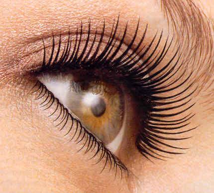 full_z_eyelashes_mascara1